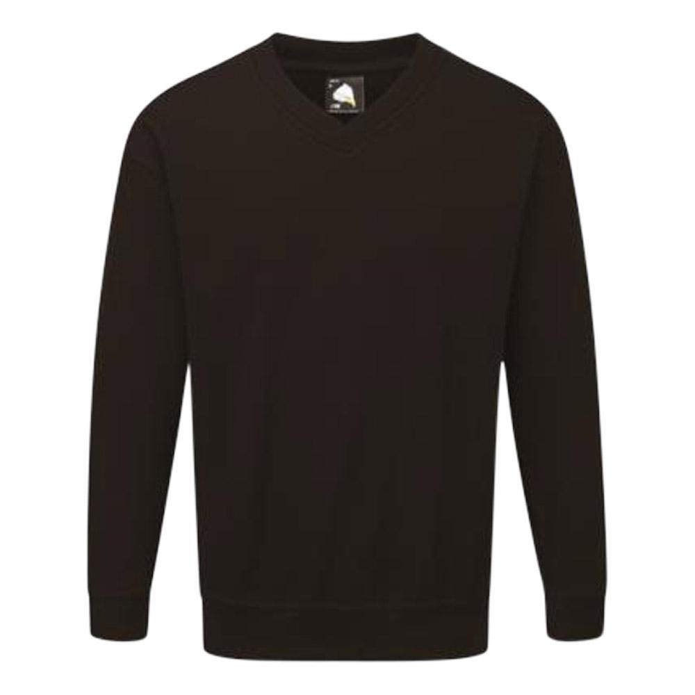 Buzzard V-Neck Sweatshirt