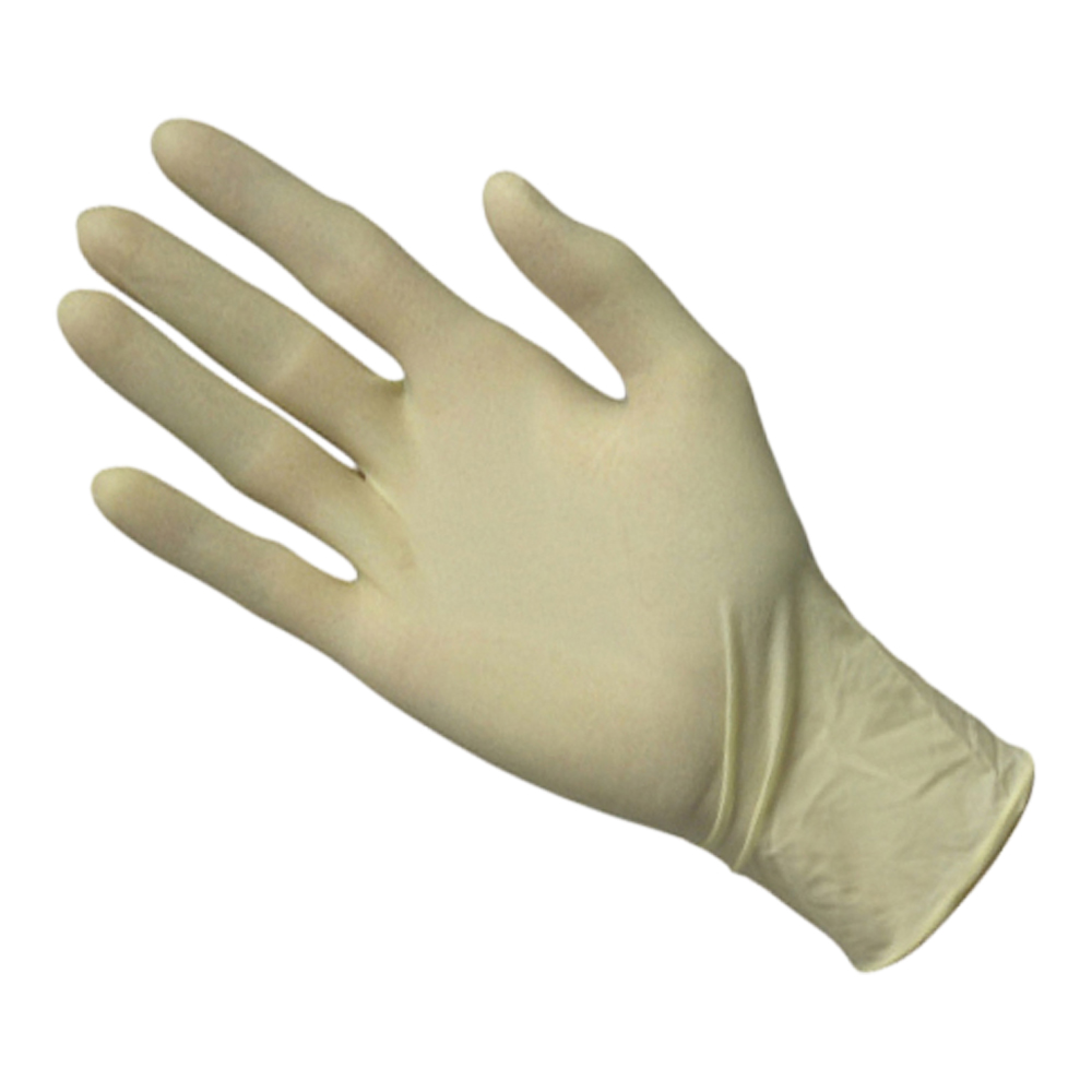 Latex Powder Free Disposable Gloves (Box Of 100)